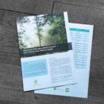 PEFC_Nachhaltige Waldwirtschaft